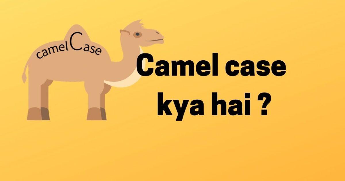 camel case camelCase kya hai